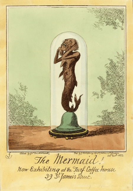 curiousmermaid