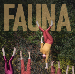 Adelaide Fringe Circus Review:Fauna